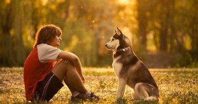 Che cosa è la telepatia con animali
